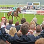 Popular Horse Racing Betting Terms