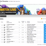 Betfair sportsbook horse racing odds