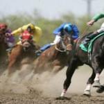 5 horse bet types