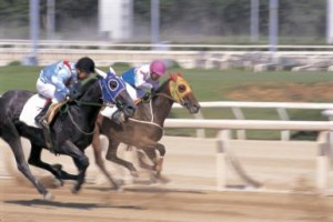 Horse Racing Betting Systems