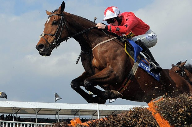 Ante post betting on Horses