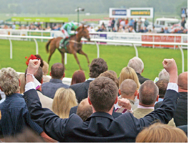 Popular Horse Racing Betting Terms
