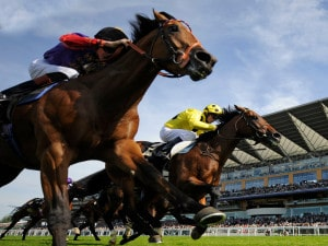 Each Way Rules on Horse Racing Bets