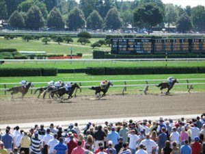 Get to Know your Horse Racing Betting Terms