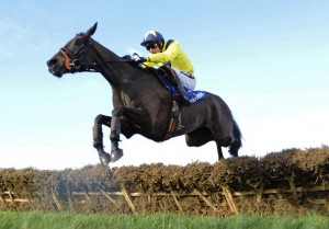 Ante Post Betting Rules on Horse Races