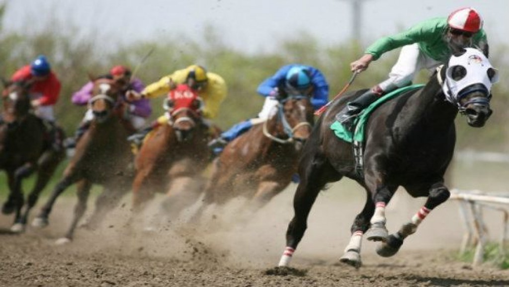 How To Bet Each Way (EW) on Horse Racing