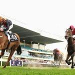 Horse Racing bets online
